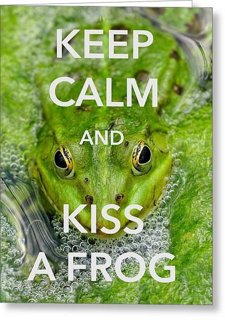 Head In The Water Greeting Cards - Keep calm and kiss a frog funny quote Greeting Card by Matthias Hauser