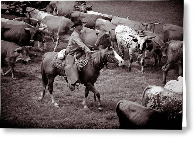 Cattle Drive Photographs Greeting Cards - Keep em moving Greeting Card by Toni Hopper
