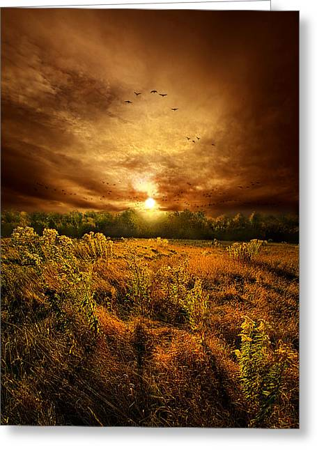 Wild Geese Greeting Cards - Keep Me In Your Heart Greeting Card by Phil Koch