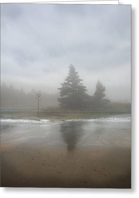 Maine Landscape Greeting Cards - Keep Right Greeting Card by Juli Scalzi