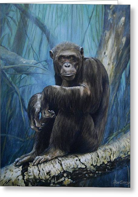 Monkeys Greeting Cards - Keeper of the Congo Greeting Card by Rob Dreyer AFC