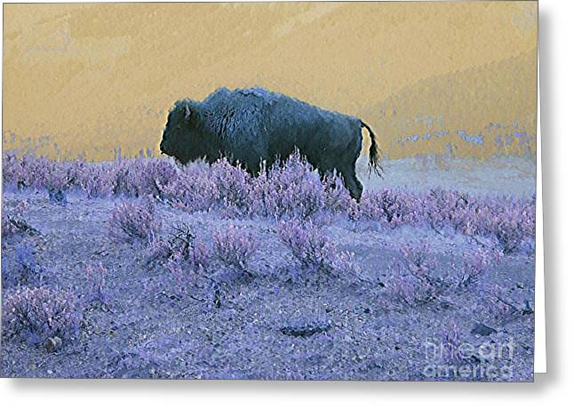 Buffalo Extinction Greeting Cards - Keeper of the Prairie Greeting Card by Ann Johndro-Collins