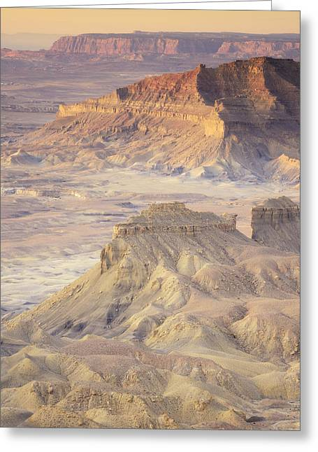 Rugged Cliffs Greeting Cards - Kelly Grade Overlook In The Grand Greeting Card by Peter Carroll