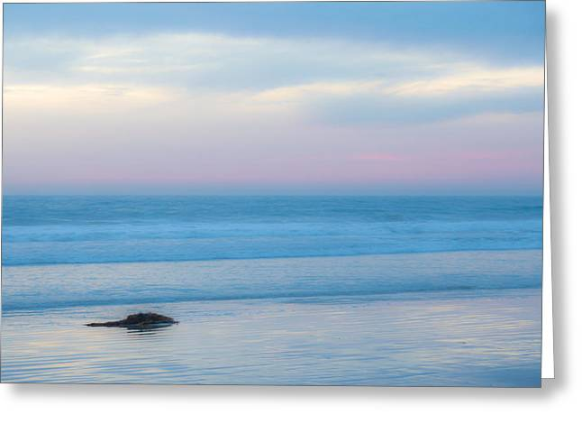 Ocean. Reflection Greeting Cards - Kelp Greeting Card by Peter Tellone