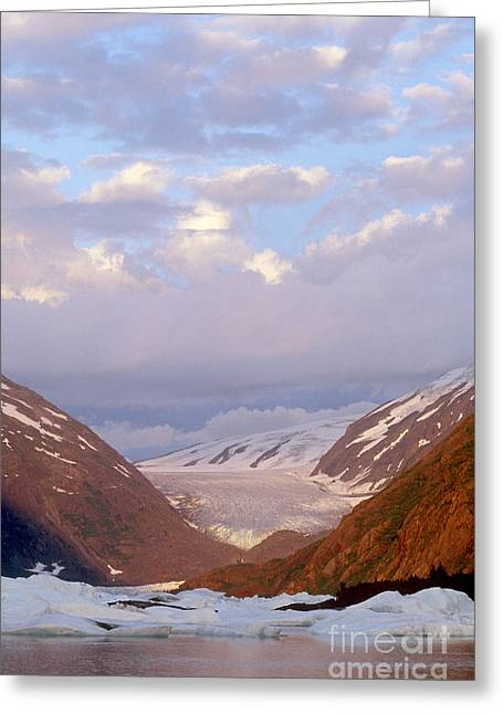 Portage Photographs Greeting Cards - Kenai Fjords National Park Greeting Card by Art Wolfe