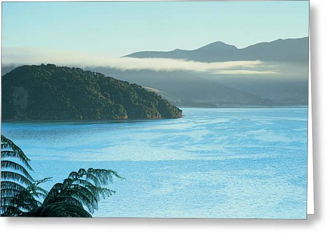 Foggy Day Greeting Cards - Kenepuru, Marlborough Sound, New Zealand Greeting Card by Panoramic Images