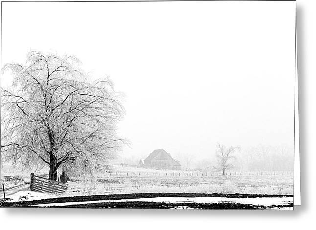 Kentucky Winter  Greeting Card by Wendell Thompson