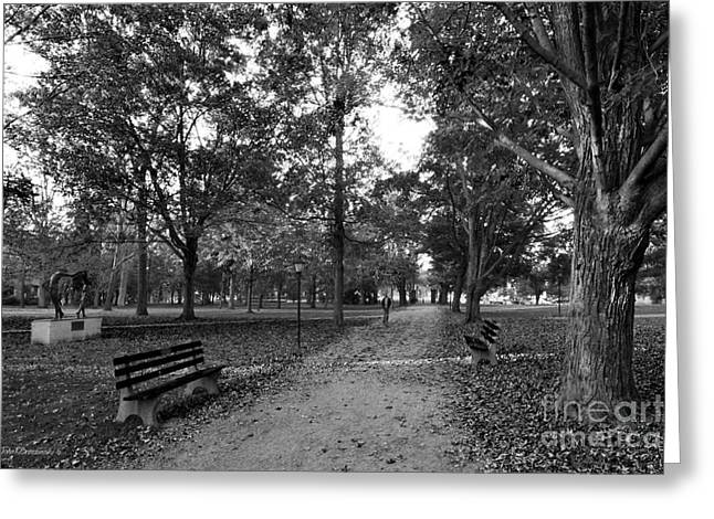 Liberal Greeting Cards - Kenyon College Middle Path Greeting Card by University Icons