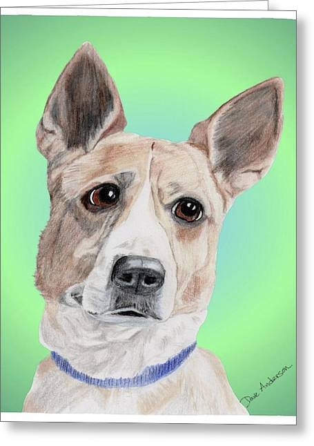 White Terrier Mixed Media Greeting Cards - Kermit Humane Society Sweetie Greeting Card by Dave Anderson