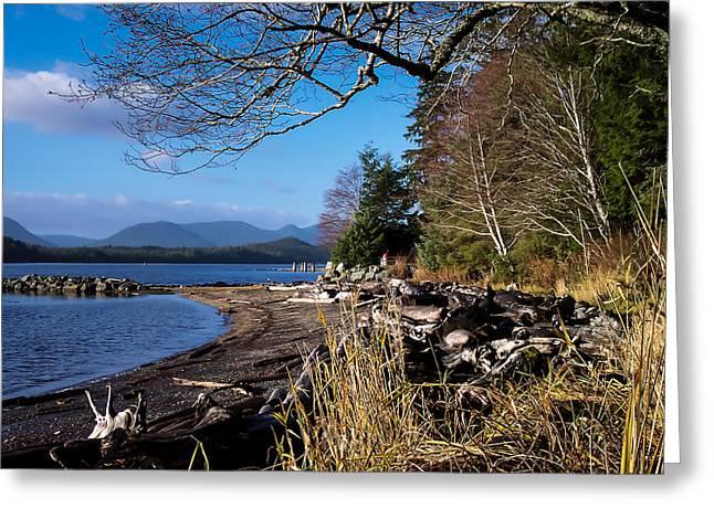 Wilderness Greeting Cards - Ketchikan Alaska Beach Greeting Card by Michael J Bauer