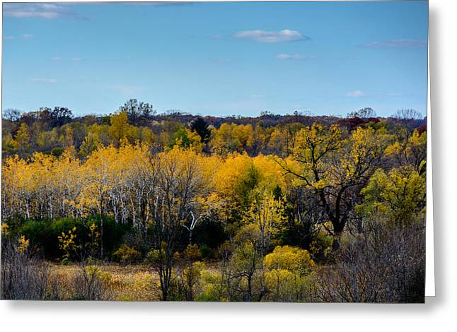Kettle Moraine Greeting Cards - Kettle Moraine Colors Greeting Card by Randy Scherkenbach