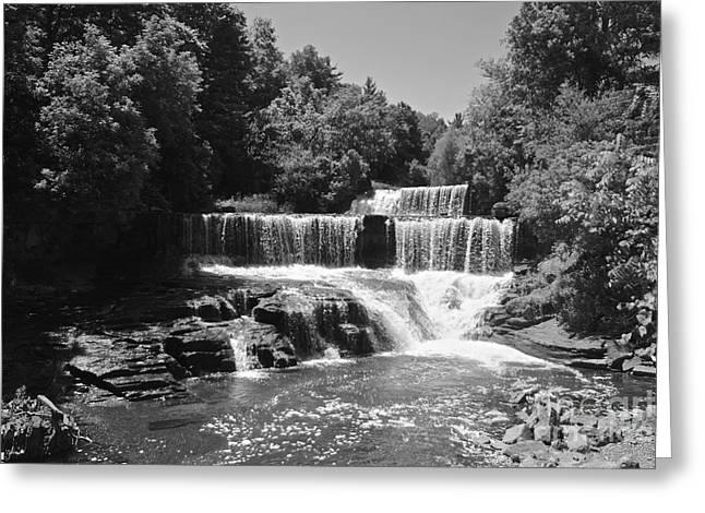 Keuka Greeting Cards - Keuka Trail Waterfall Greeting Card by William Norton