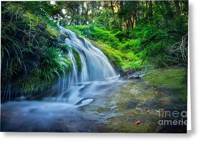 Lighted Pathway Greeting Cards - Kew Mae Pan Greeting Card by Anek Suwannaphoom