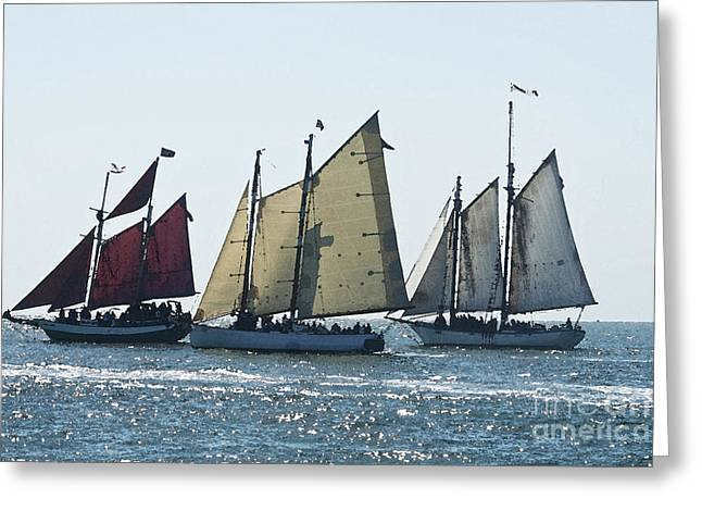 Historic Schooner Greeting Cards - Key West Historic Navel Blockade  Greeting Card by Janis Lee Colon
