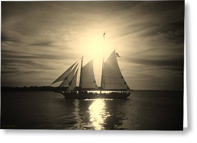 Yellow Sailboats Greeting Cards - KEY WEST SAILS in BLACK AND WHITE Greeting Card by Rob Hans