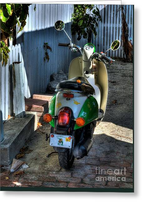 Key West Scooter Greeting Card by Mel Steinhauer