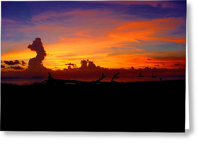 Collectible Mixed Media Greeting Cards - Key West Sun Set Greeting Card by Iconic Images Art Gallery David Pucciarelli