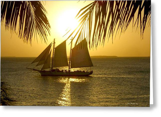 Boat Cruise Greeting Cards - Key West Sunset Greeting Card by Joan  Minchak