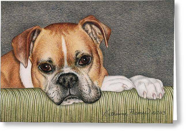 Boxer Drawings Greeting Cards - Keyva Greeting Card by Katherine Plumer