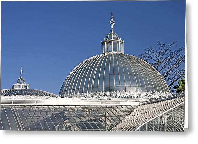 Scotland Greeting Cards - Kibble Palace Greeting Card by Liz Leyden