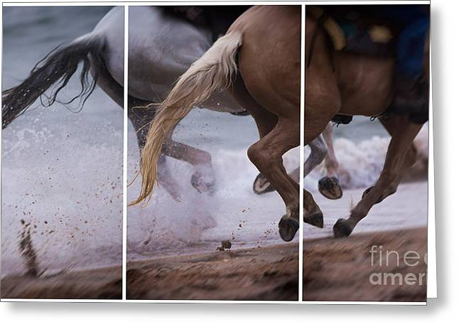 Horses On Sale Greeting Cards - Kicking up the Sand Greeting Card by Mary Lou Chmura