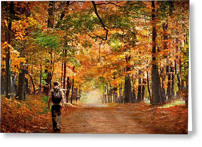 Children Only Greeting Cards - Kid With Backpack Walking In Fall Colors Greeting Card by Panoramic Images