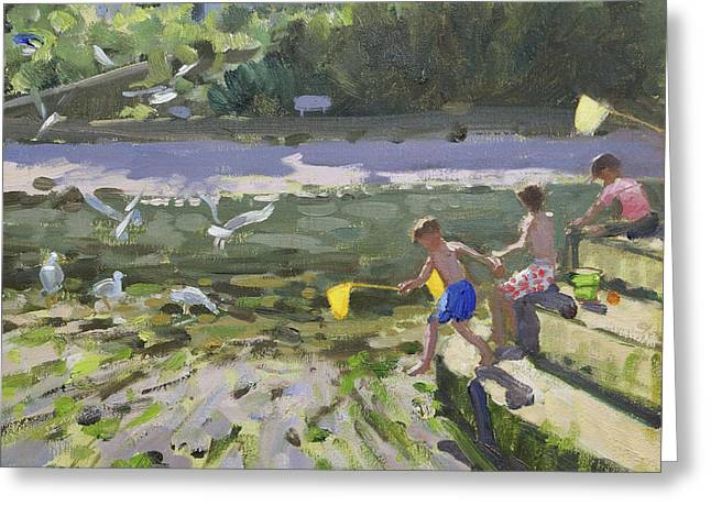 Sea Gulls Greeting Cards - Kids and seagulls Greeting Card by Andrew Macara