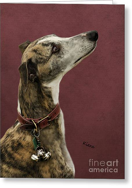 Dog Pics Greeting Cards - Kiera Greeting Card by Linsey Williams