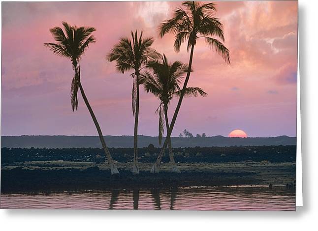 Tim Fitzharris Greeting Cards - Kiholo bay in Hawaii Greeting Card by Tim Fitzharris