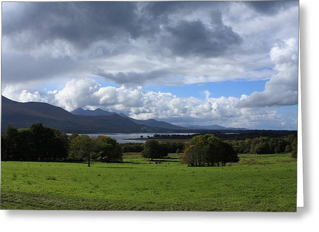 Horse Websites Greeting Cards - Killarney National Park Greeting Card by Aidan Moran