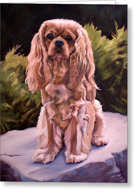 King Charles Cavalier Greeting Cards - King Charles Cavalier Greeting Card by Maggie Mayer