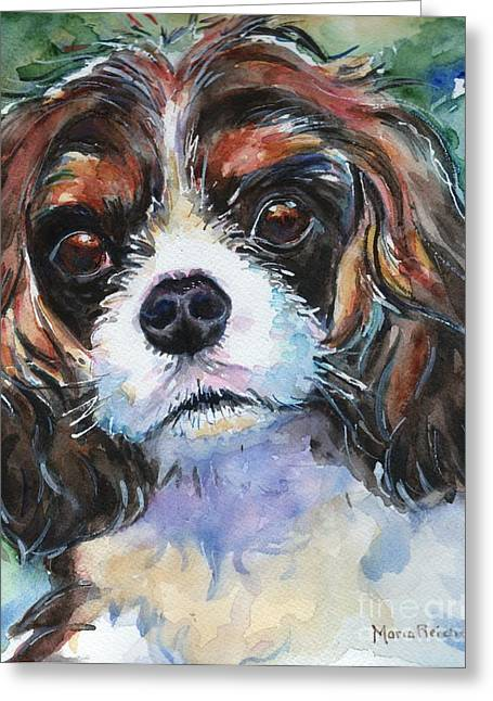King Charles Cavalier Greeting Cards - King Charles Spaniel  Greeting Card by Maria