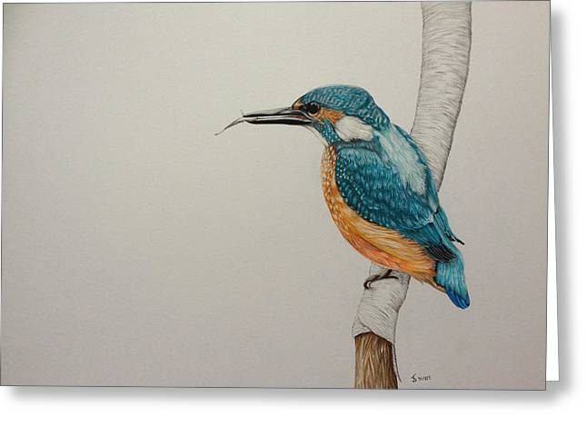 Bird On Tree Drawings Greeting Cards - King fisher  Greeting Card by Jess Stanley