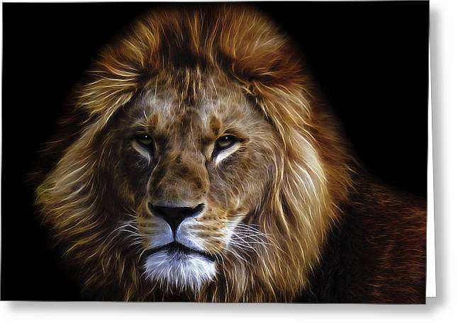 Preditor Greeting Cards - KING of AFRICA Greeting Card by Daniel Hagerman