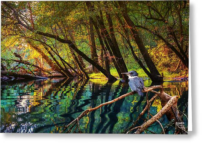 Tennessee River Greeting Cards - King of North Chick Greeting Card by Steven Llorca