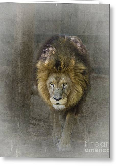 Tn Greeting Cards - King of the Jungle #2 Greeting Card by TN Fairey