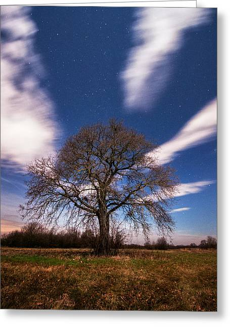 Moonscape Greeting Cards - King of the night Greeting Card by Davorin Mance