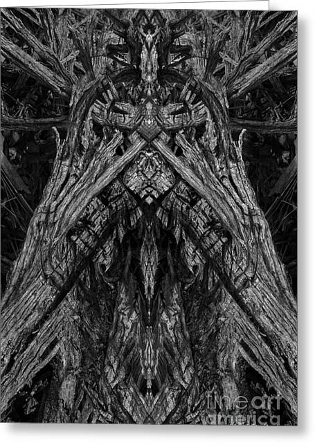 Archetypes Greeting Cards - King of the Wood Greeting Card by David Gordon