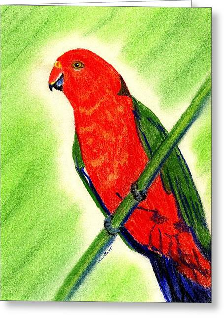 King Pastels Greeting Cards - King Parrot   Greeting Card by Olde Time  Mercantile