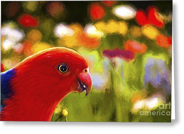 Parrot With Flower Greeting Cards - King parrot with flowers Greeting Card by Sheila Smart