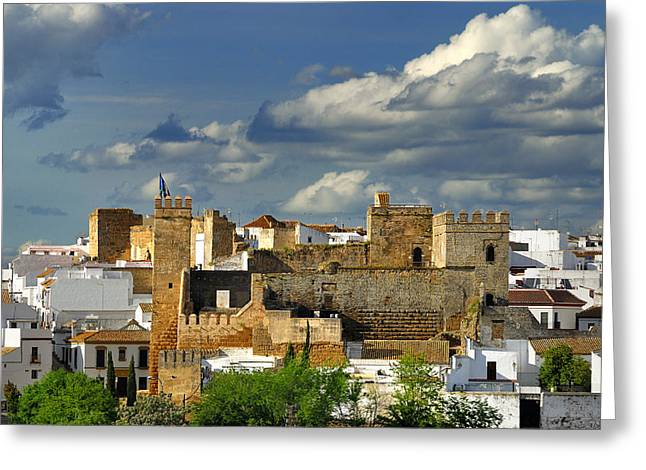 Carmona Greeting Cards - King Peter Alcazar Greeting Card by Guido Montanes Castillo