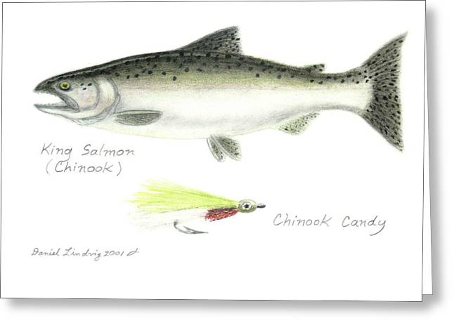 Salmon Drawings Greeting Cards - King Salmon or Chinook and Chinook Candy Fly Greeting Card by Daniel Lindvig