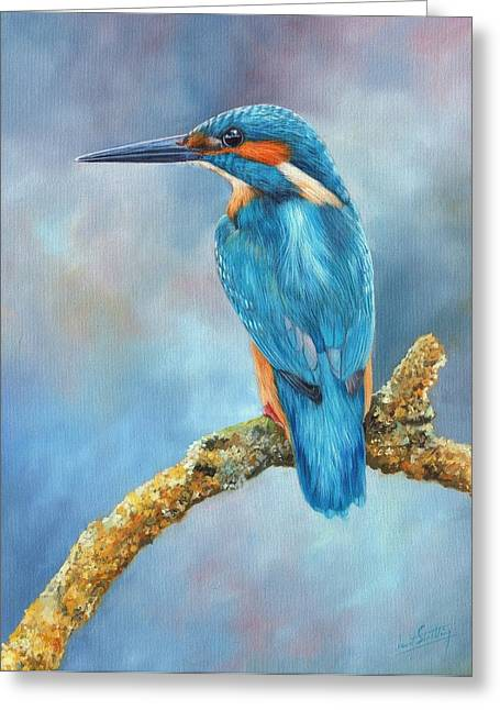 Flash Greeting Cards - Kingfisher Greeting Card by David Stribbling