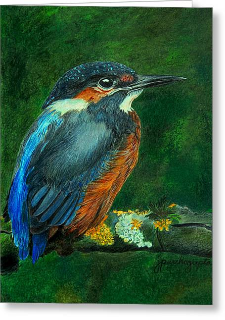 Painted Details Drawings Greeting Cards - Kingfisher Drawing Greeting Card by Janet Pancho Gupta