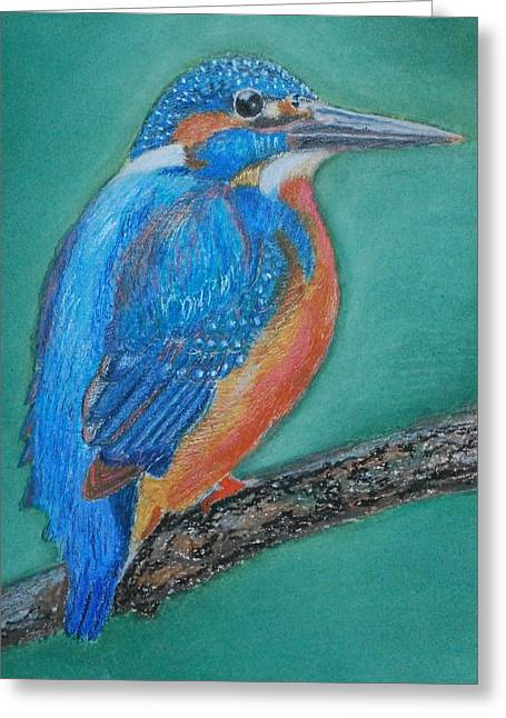Diving Pastels Greeting Cards - Kingfisher Greeting Card by Rosalind Duffy