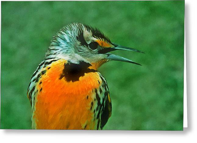 Little Red River Paintings Greeting Cards - Kingfisher  sitting on its perch Greeting Card by Lanjee Chee