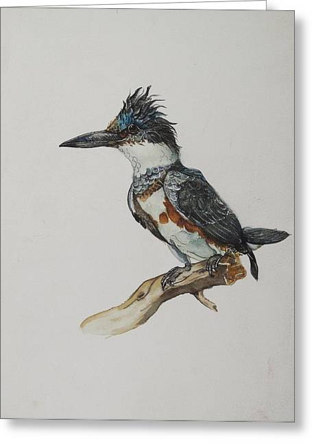 Alfred Ng Art Greeting Cards - Kingfisher Watercolor Greeting Card by Alfred Ng