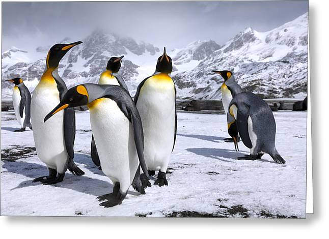 Kings At Right Whale Bay Greeting Card by Oliver Prince