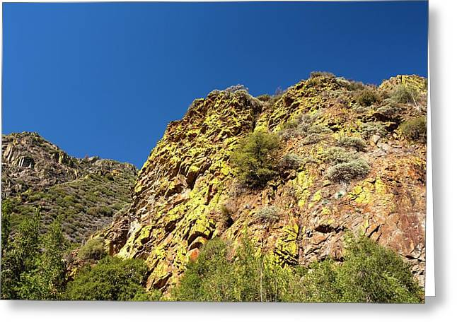 Kings Canyon National Park Greeting Card by Ashley Cooper