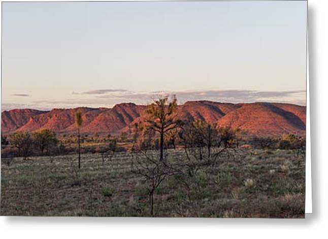 Kings Canyon Greeting Cards - Kings Canyon Panorama Greeting Card by Linda Lees